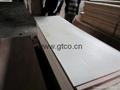 Poplar DoorSkin plywood