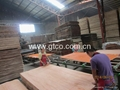 Lath Plywood