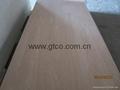Pencil Cedar Faced Poplar Core Plywood