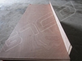 Sapeli Door Skin Plywood