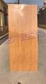 Fiber-Glass Plywood Door Skin