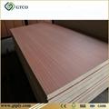 Sapelli Plywood