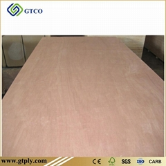 PKD Faced Combin core Plywood ( India)