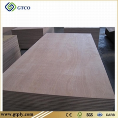 Keruing Plywood (India)