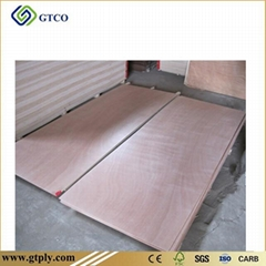 Okoume Door Skin Plywood (Hot Product - 1*)