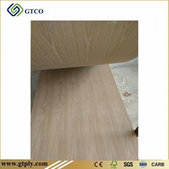 Ash Door Skin Plywood