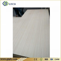 EP Veneer Plywood Door Skin