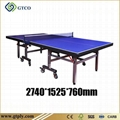 Indoor Pingpong Table