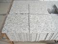 G439 Granite Tiles 2