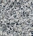 G640 Lunar Pearl Granite