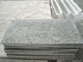 G640 Lunar Pearl Granite 2