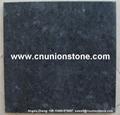 Black Diamond Granite Tiles 2