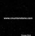 Black Diamond Granite Tiles 3