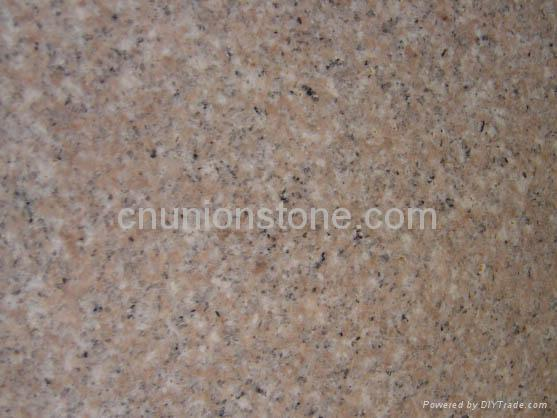 G681 Shrimp Red Granite Tiles 1