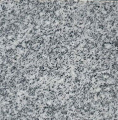 G633 Padang Light Granite Tiles