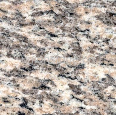 tiger skin red granite flooring tiles tiger red tiles. Black Bedroom Furniture Sets. Home Design Ideas