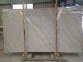 Italian polished white palissandro marble
