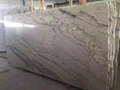 Viscon white granite slab