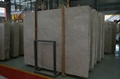 Light Czanne grey marble