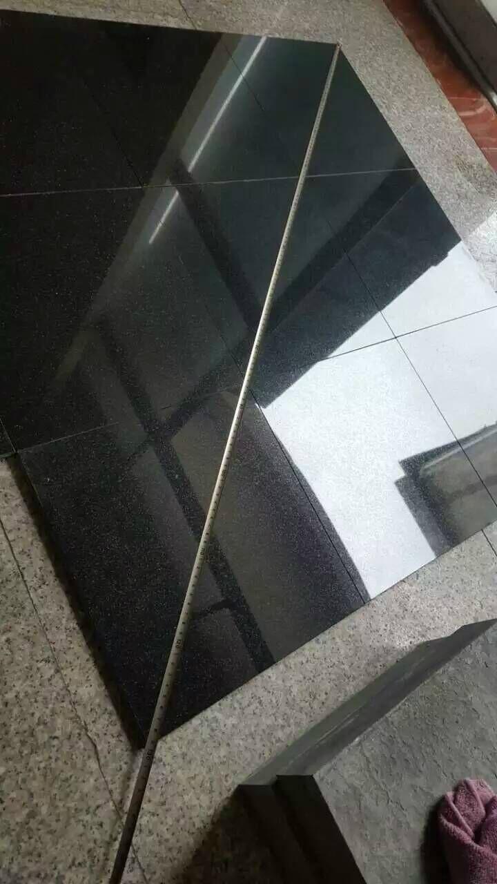 China shanxi black granite tile