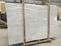 Beautiful oriental white marble 2