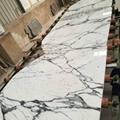 Italy white arabescato bianco marble