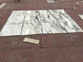 Cut To Size Arabescato Marble Tile White Marble Union
