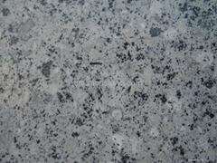 Ash Grey white granite s