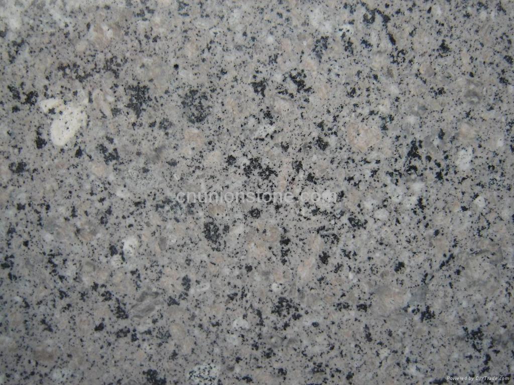 Ash Grey White Granite Slabs Flooring Tiles Uniono Stone