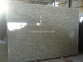 Giallo San Francisco granite slabs,tiles 2