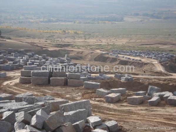 Purple Blue Diamond granite slabs,granite tiles 5