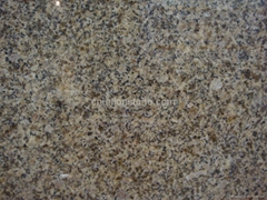 Giallo Catedral Granite Slab