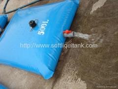 pillow water bladder