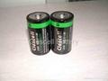 Alkaline Battery LR20 D size