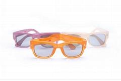 2018 plastic  eyewear 3D