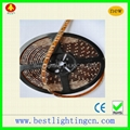 LED strip lamp,brand lamp,flexible lamp,