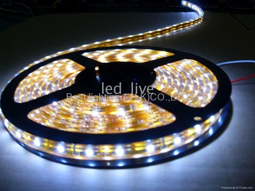 3528 SMD LEDS 软灯条 1
