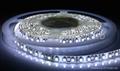 3528 SMD LEDS 软灯条 3