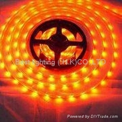 LED strip lamp,flexible lamp,LED flexible lamp,LED light,LED tube lamp,