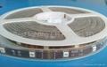 LED Strip Light 5050 SMD LED 30PCS