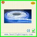 3528 120 SMD LED Waterproof  Strip lamp