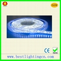 3528 120 SMD LED Waterproof  Strip lamp