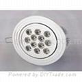 12 watt, With 12 LED's, LED light bulb, Round Ceiling Down light