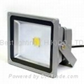 240V ac, 30 watt, 50 watt, LED Flood light