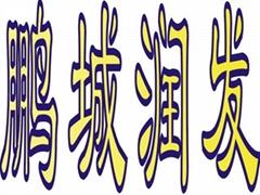 深圳市鹏城润发电子有限公司