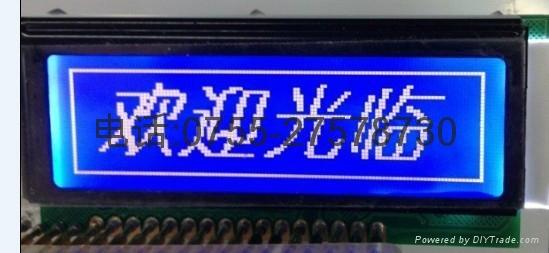 12232帶中文字庫串並口液晶顯示模塊 4