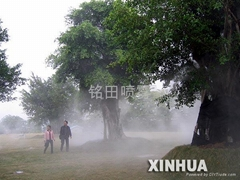人造霧,冷霧