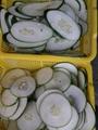 C-306葉莖類切菜機(切筍絲.片機)