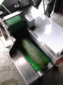 C-305 Vegetable Cutter 8