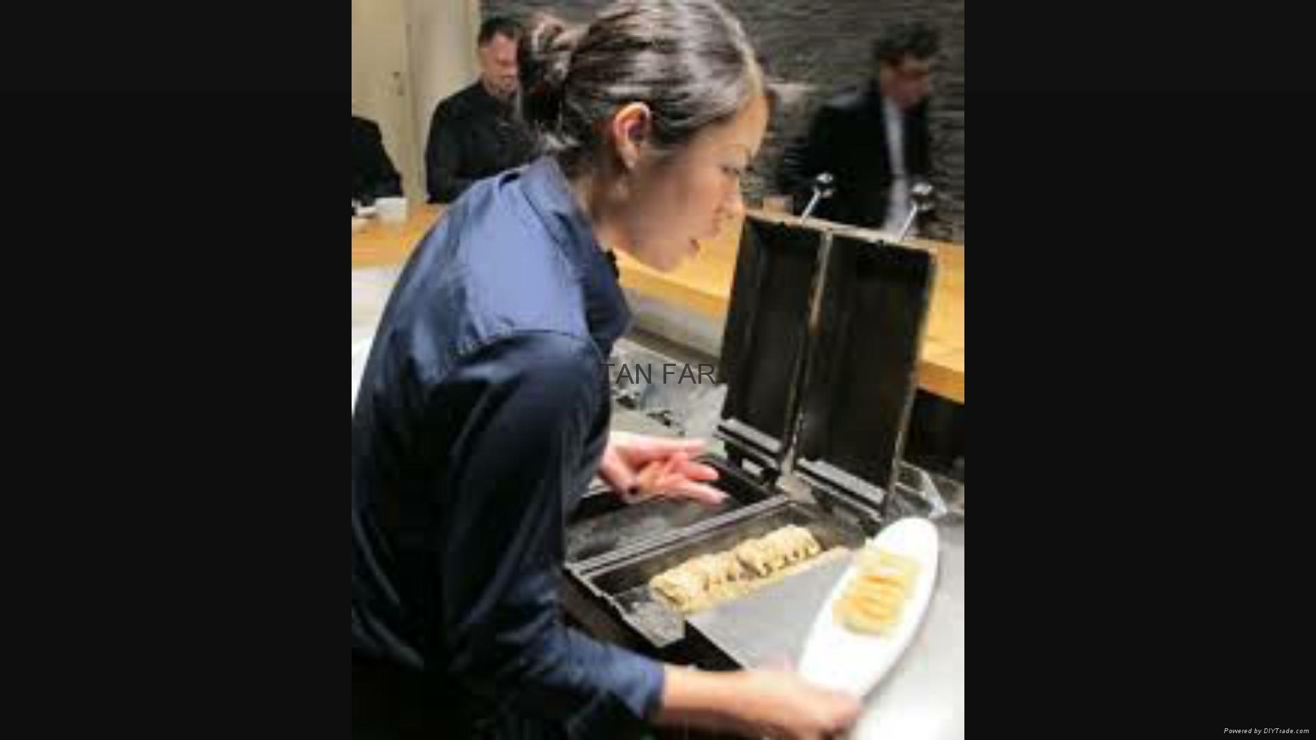 日本龙煎饺子炉   电加热 两板或单板型号 5
